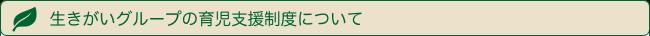 shien-midashi